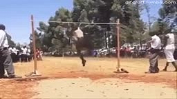 Ebony Men Jumping Ability vs Ivory Men Jumping Ability