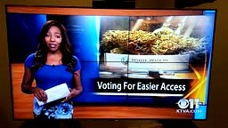 News Reporter Quits on Set to Smoke Weed