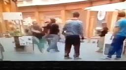 Thief Gets KTFO by Karate Expert