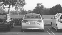Terii Car Alarm-Anti Theft Negotiator