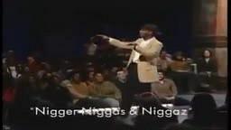 Niggers,Niggas, Niggaz