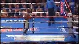 Smart Boxing-Mayweather vs Pacquiao Fight