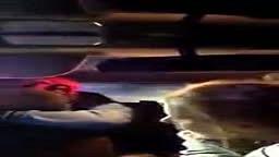 Virginia Police Caught Assaulting Teen
