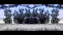 Machine Gun Kelly: 'Blue Skies' (Official Music Video)