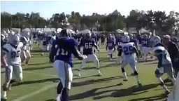 DEZ BRYANT PUNCHED IN THE FACE DURING BRAWL WITH ST LOUIS RAMS