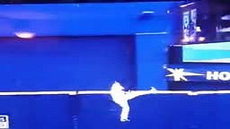 FAIL!!! Baseball Outfielder JUMPS The WALL To Catch The Ball...