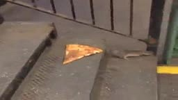 HEY Look its Master Splinter taking pizza home to the Teenage Mutant Ninja Turtles LOL