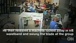 See Black Female Lt. Save Lives & Gun Down Crazed Man With Machete At Airport