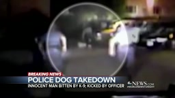 Police Let Dogs Loose & Stomp Black Man Out, But He's The Wrong Guy!