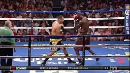 Deontay Wilder vs Eric Molina - Highlights - Wilder almost knocked out