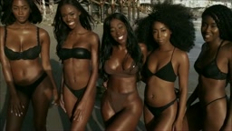 I Love Black Women starring Bria Myles song by Ap 1nabillion