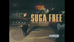 Suga Free Ft. DJ Quik   Why You Bullshittin