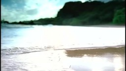 LL Cool J ft. Amerie   Paradise (Official Video)