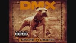 DMX  WE GO HARD