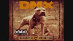 Dmx Were Back