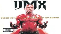 Dmx-Heat