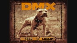 DMX-DOGS FOR LIFE