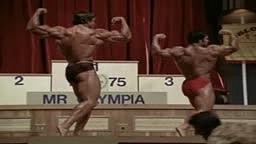 Arnold Schwarzenegger muscles