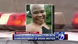 Bronx Man Cuts Up Mother Into Pieces