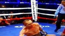Hopkins vs Shumenov rd 11 knock down