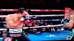 Marquez vs Alvarado Fight